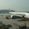 【ANA SFC修行】シンガポール航空からオークション・アップグレードの案内!ビットはおいくらに?