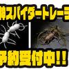 【イマカツ】新世代バーサタイル虫系ワーム「風神スパイダートレーラー」通販予約受付中!