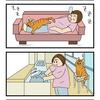 第22話 猫漫画 1メートルの距離で