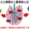【ウイルス性肺炎】二次感染にはご用心、ウイルス性肺炎のお話(+おまけでインフルエンザの話も)