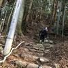 箱根外輪山反時計回り 半周コース