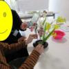 生け花プログラム実施しました🌺