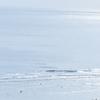 ウインターサーフ物語。「今こそが真冬なのでしょうか。強烈な寒波が波打ち際に小波ととも訪れて、これが厳冬でしょうか、と自分に言い聞かせながら波間に浮かぶ劇寒の海物語」の巻。