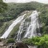 【屋久島】名瀑百選 大川の滝(おおこのたき)
