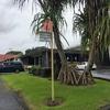ハワイ島の思い出3 火山公園からヒロへ