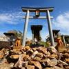 【鳴神山】世界に一つだけのオンリーワン、鳴神山にしか咲かないカッコソウを求めた山旅