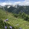 常念岳と蝶ヶ岳を日帰り登山