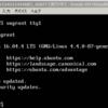 Vagrantによる環境構築(2) Windows上でVagrantとVirtualBoxを利用してUbuntu開発環境を構築する