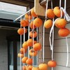 干し柿の栄養効果・効能は?自家製干し柿の簡単な作り方とは?