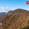 【伊豆】天城山、伊豆の代名詞たる晩秋の百名山、歴史と文学と樹林の山を歩く旅