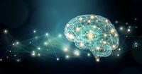 """あなたの不得意はどれ? 「苦手な仕事4パターン」克服したければ """"脳"""" をこうして鍛えなさい"""
