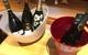 都立大学の『トラットリア・イルディスティーノ』でワイン会