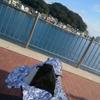 横須賀散歩①  〜走水神社〜