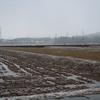記録的な暖冬、少雪