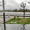 尾池(香川県高松)
