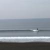 サーフィン  湘南鵠沼 波ブログ 2019/12/15-20