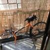 花粉に負けて自転車メンテナンス