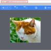 PC画面を簡単に共有できるツール「Gyazo」の紹介