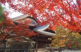 【2019】京都府内の紅葉 寺院仏閣を中心とした穴場スポット16選