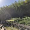 佐東銀山城の戦いでの武田一族郎党の墓です。