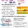ひきこもりプレイス多摩&ひきこもり当事者グループ「ひき桜」in横浜のご案内
