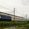 第1658列車 「 甲91 東京メトロ17000系(17183f)の甲種輸送を狙う 」