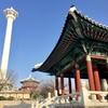 韓国の女性市民団体が開催イベントに、「日本ならヘイトスピーチ」の声が
