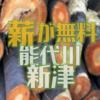 能代川で伐採した樹木が無料配布されます 新津