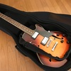 AAA ( トリプルエー ) / AC-520NV エレキギター用ケース 硬めのソフトケース