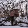 散策②二期倶楽部の庭プロジェクト「木階」