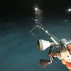 夏の夜空のイカメタルゲーム / 爆釣すると噂のいわし油を使ってみた結果・・・?