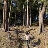 石垣山城(一夜)とヨロイヅカファーム(その2)