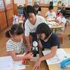 5年生:理科 ヘチマの花粉を観察