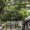 掛川の事任八幡宮(ことのままはちまんぐう)に行ってきました。