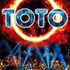 TOTO/40 Tours Around The Sun