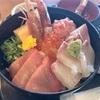 三浦市三崎町小網代の「レストラン潮彩」で海鮮丼、タコの唐揚げなど