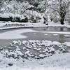 雪の日の大智寺。