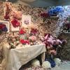 ≪アーティス地下2階&hanadouraku麹町本店様連動企画!≫「妖しの園~花とインテリアから広がる空間~」設置完了しました!