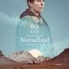 「ノマドランド」寂寥感漂うドキュメンタリータッチの映画ですが…