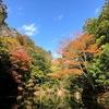 2020.11.18笹川湖