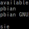 Raspberry Piバージョン確認方法まとめ