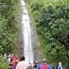 ワイキキ近くのパワースポット「マノアの滝」で気軽にトレイルを楽しもう!気になるアクセスや持ち物を紹介します。雨具は必携!?