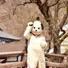 日光江戸村に行ったはなし