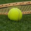 【生中継】全豪オープンテニス2017をWOWOWでお得に観るには?NHKはハイライトメイン。大会日程も記載!