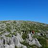 【登山】秋吉台トレッキング~岩がにょきにょきっと~