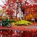 栗駒山の紅葉を見に行こうよう(激寒)ツーリング