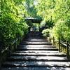 【 #鎌倉散歩旅2017 ①】わたしは、ただ悟りたかったんだ。(17'05.27)【明月院】