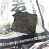 『発酵文化人類学』小倉ヒラク 木楽舎 を読んで 碁石茶を飲んで見ました