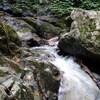 岸田川流域の滝めぐり(その3)霧ヶ滝直前まで