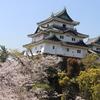 和歌山城公園の見どころを紹介!和歌山城を楽しもう